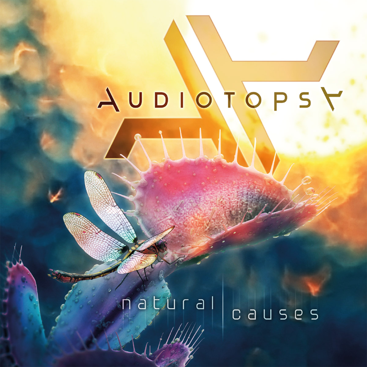 Audiotopsy - Natural Causes