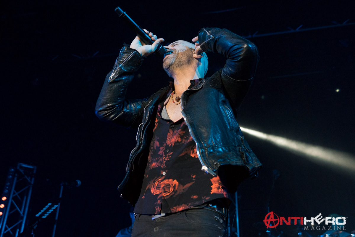 Daughtry (11)