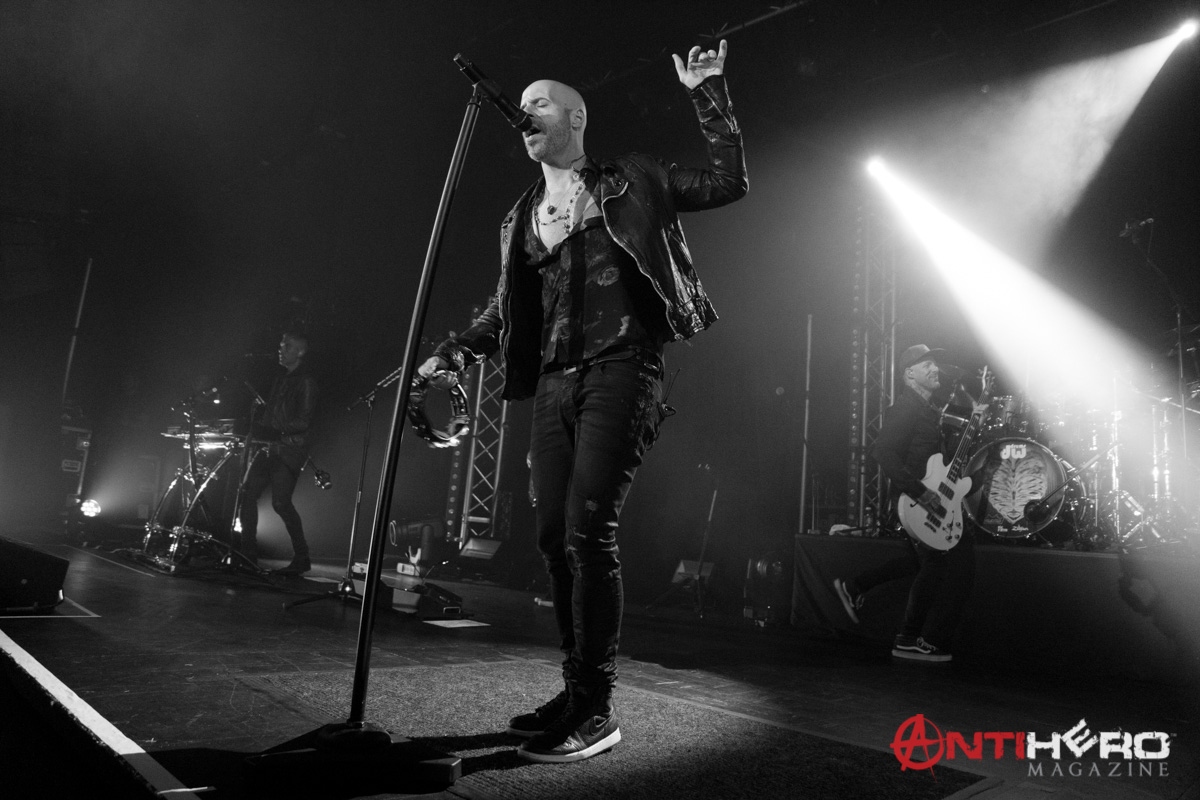 Daughtry (2)