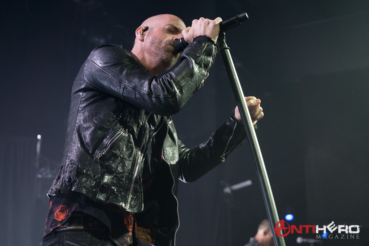 Daughtry (22)